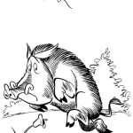 Asterix und Obelix 9