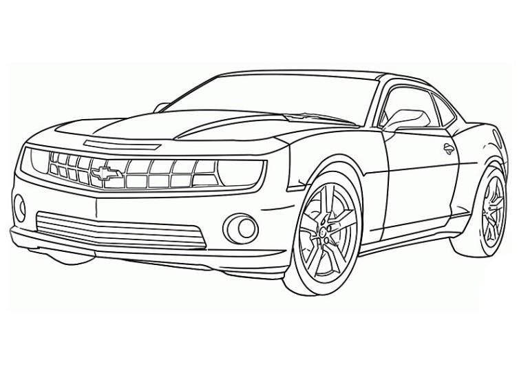 Autos 15