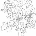 Blumen 7