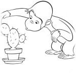 Coco Der neugierige Affe 19