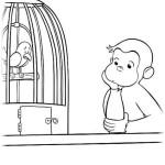 Coco Der neugierige Affe 24