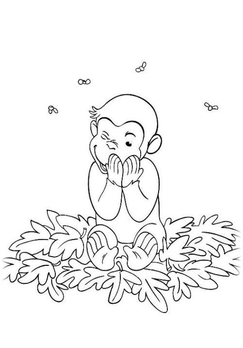 Ausmalbilder für Kinder Coco Der neugierige Affe 25