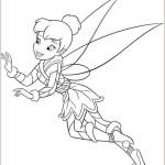 Das Geheimnis der Feenflugel 7