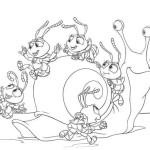 Das grosse Krabbeln 16