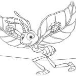 Das grosse Krabbeln 17
