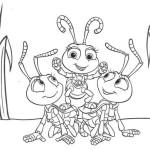 Das grosse Krabbeln 18