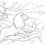 Die Chroniken von Narnia 13