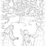 Die Chroniken von Narnia 6