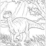Dinosaurier 21