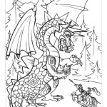 Drachen 11