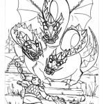 Drachen 13