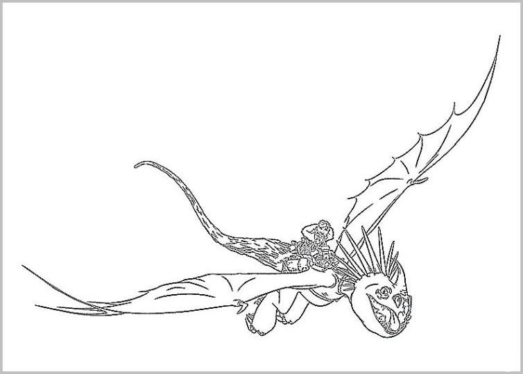 ausmalbilder dragons astrid und sturmpfeil | kinder