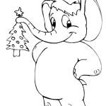 Elefant 17