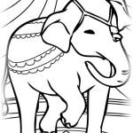 Elefant 20