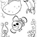 Findet Nemo 11