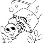 Findet Nemo 12