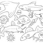 Fische 10
