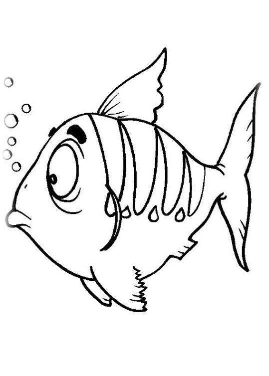 ausmalbilder für kinder fische 2