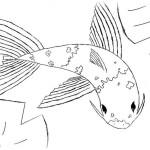 Fische 20