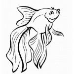 Fische 22