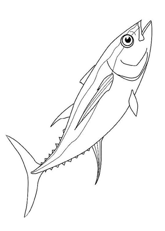 ausmalbilder für kinder fische 3