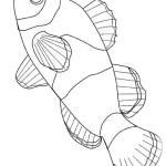 Fische 6
