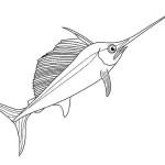 Fische 7
