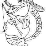 Fische 8