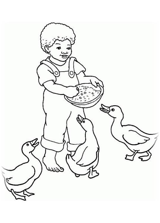 ausmalbilder für kinder gans 11