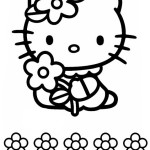 Hello Kitty 12