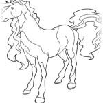 Horseland 6