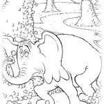 Horton hort ein hu 15