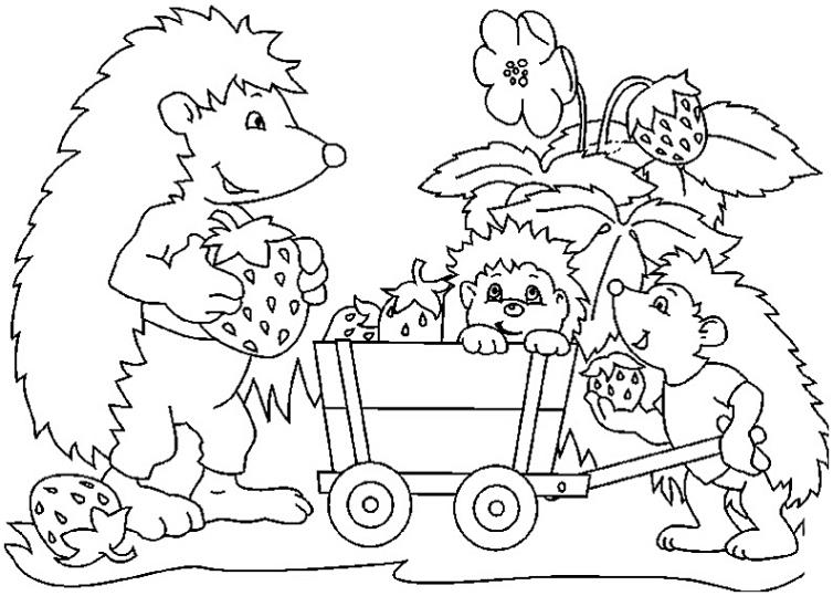 Ausmalbilder Für Kinder Igel 18
