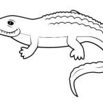Krokodil 22