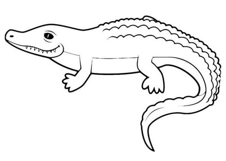 Ausmalbilder Für Kinder Krokodil 22