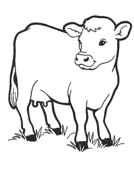 Fein Malvorlagen Von Kühen Bilder - Beispielzusammenfassung Ideen ...