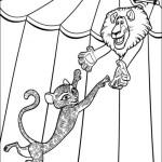 Madagascar 3 12