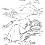 Merida – Legende der Highlands 14