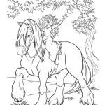 Merida – Legende der Highlands 8