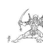 Ninja 12