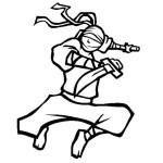 Ninja 7