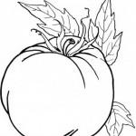 Obst und Gemuse 10