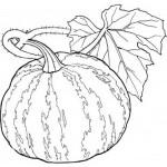 obst und gemüse ausmalbilder malvorlagen kostenlos ausdrucken