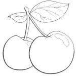 Obst und Gemuse 40