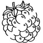 Obst und Gemuse 50