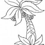 Palmen 10