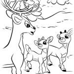 Rudolph mit der roten Nase 14