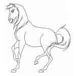 Spirit – Der wilde Mustang 1