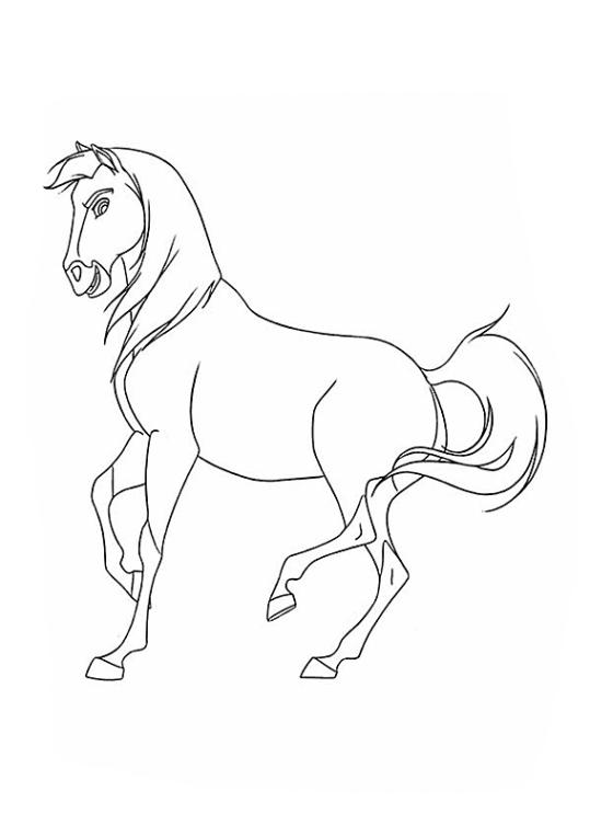 Spirit Der Wilde Mustang Ausmalbilder Malvorlagen Kostenlos Ausdrucken