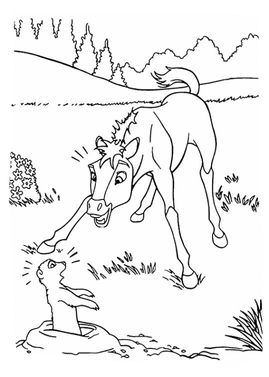 ausmalbilder für kinder spirit  der wilde mustang 10